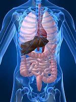 Colon Detoxification for Healthy Body.