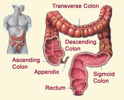 Colon Cleansing Review.
